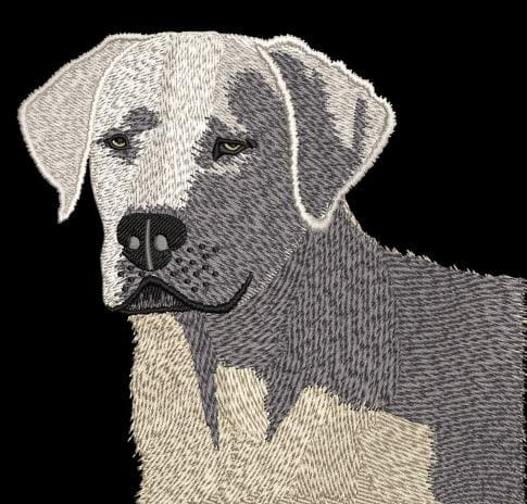 White Labrador Digitizing