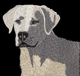 White Labrador Digitizing