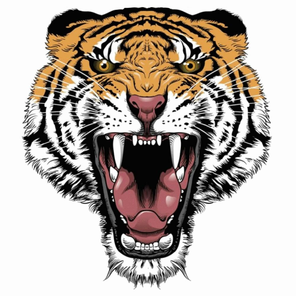 Before Tiger Embroidery Design