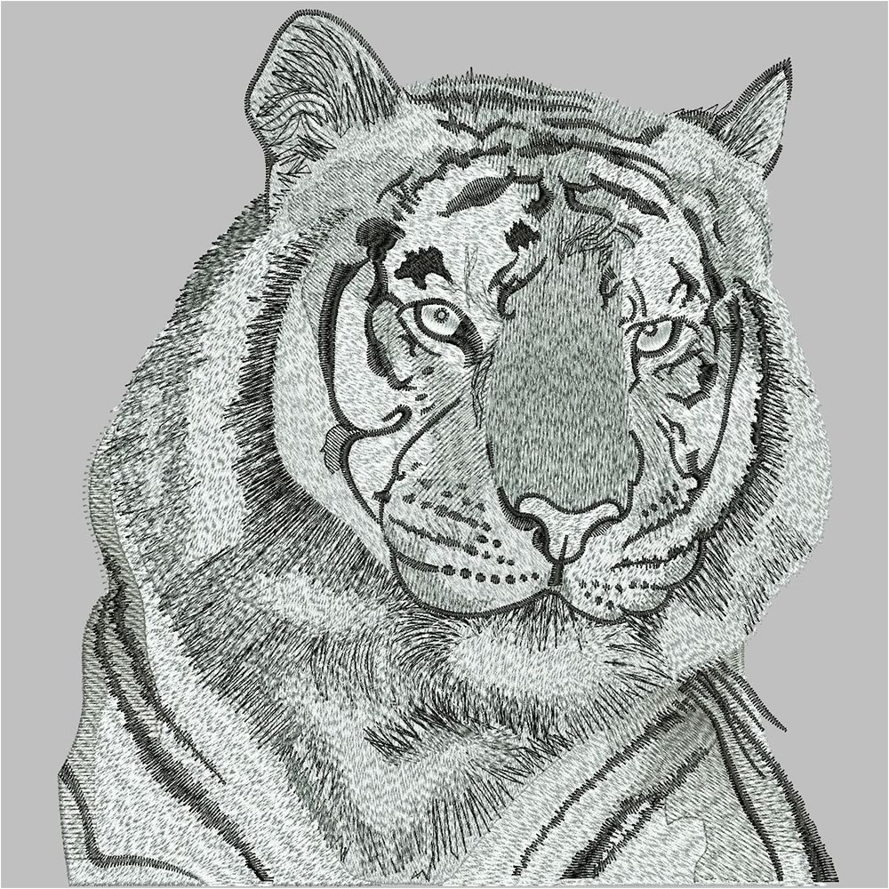After Tiger Embroidery