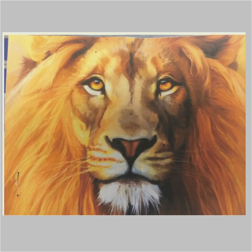 Before Lion Embroidery Design