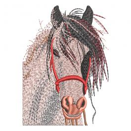 Embroidery Design: Napoleon Horse