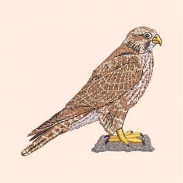 Eagle Embroidery Design