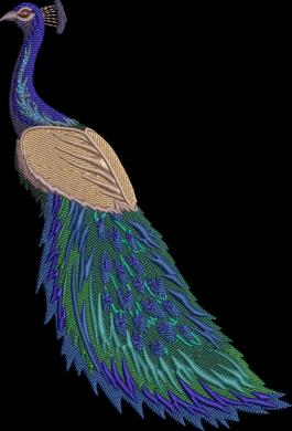Cre8iveSkill's Embroidery Design Peacock Beauty