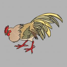 Embroidery Design Cute Rooster