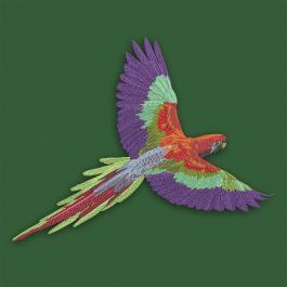 Multicolor Parrot Embroidery Design- Cre8iveSkill