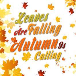 Autumn Freshness
