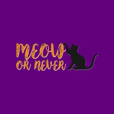 Meow Or Never Design