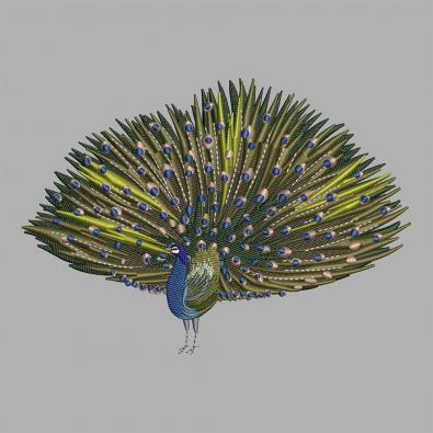 Cre8iveSkill's Embroidery Design Beautiful Peacock