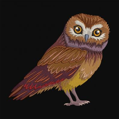 Cre8iveSkill's Embroidery Design Saw Whet Owl