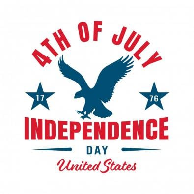 4th July Eagle vector image