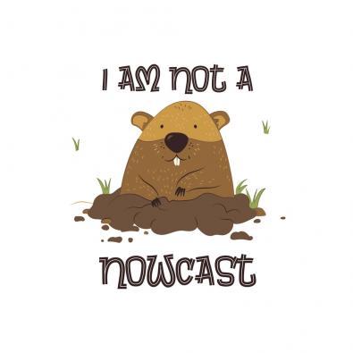 I am Not A Nowcast