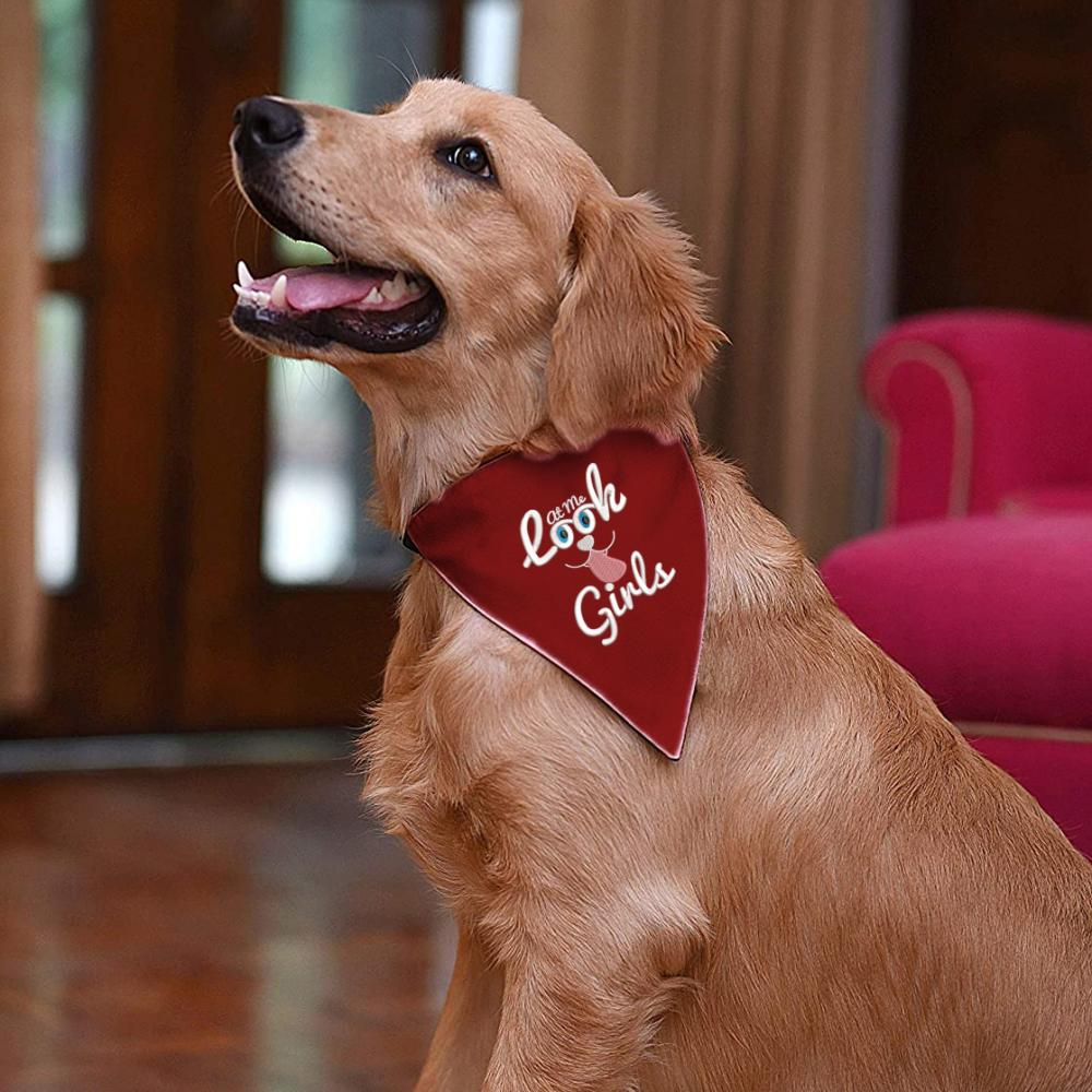 Embroidery Design: Look At Me Girls Dog Scarf