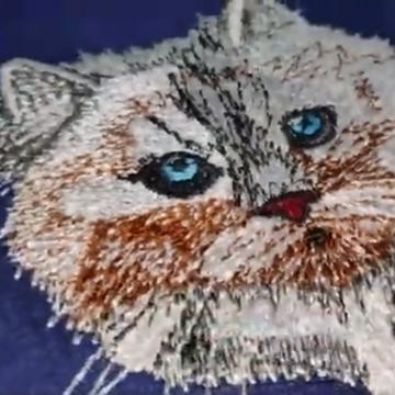 The Peeking Cat | New Product Launce Embroidery Design